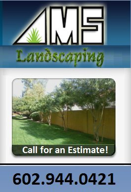Contact AMS Landscaping at 602-944-0421 or azlawns@yahoo.com or visit our website at www.azlawns.com