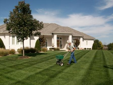 Lawn Fertilization, Weed and Insect Control