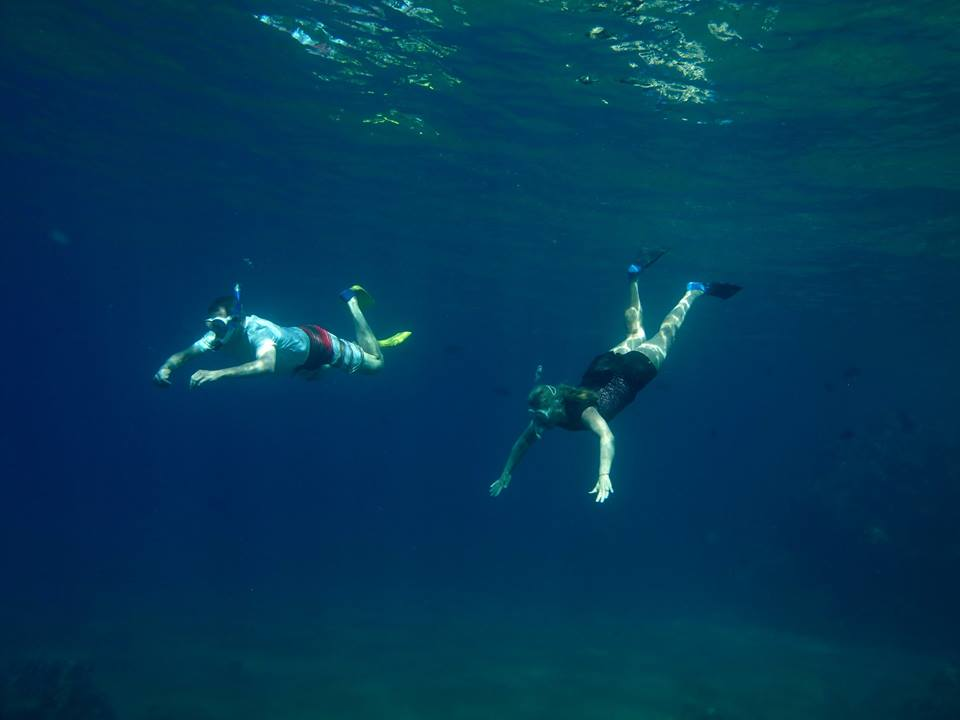 The feeling of weightlessness is the only way to describe diving down under the water. Call to book your tour today!
