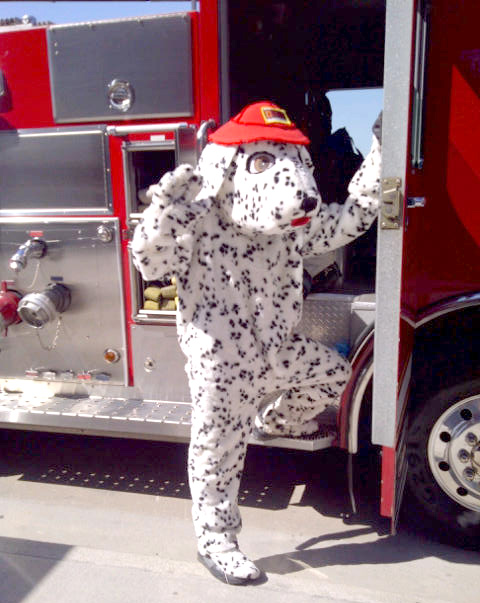 DeTech Fire Alarms Flash The Fire Dog