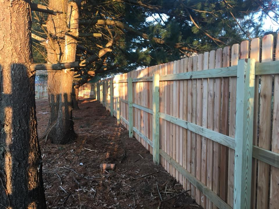 This is the interior view of one of our recently installed western red cedar (1.5 in) spaced picket fence in Collegeville, PA.  Our wood fences are stick built one picket at a time with fully framed gates and 2in x 4in runners.