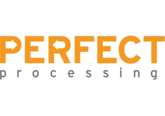 Perfect Processing logo