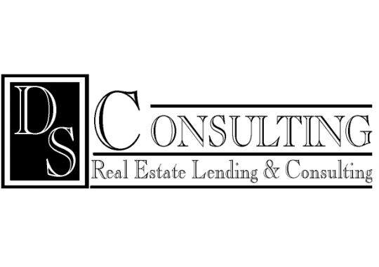 DS Consulting logo