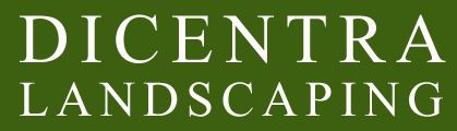 Dicentra Landscaping and Snow Removal logo