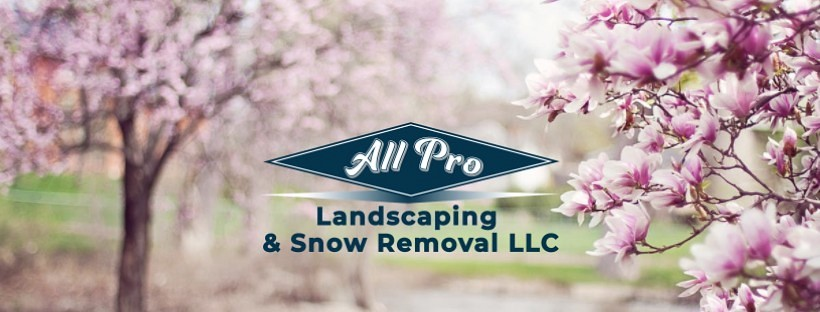 All Pro Landscaping & Snow Removal, LLC - All Pro Landscaping & Snow Removal, LLC Better Business Bureau