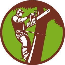 cutting edge tree service better business bureau profile rh bbb org tree service logos for tree service logo design