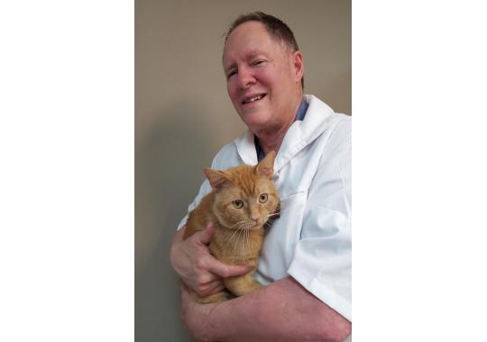 Dr. Carlin has been a Cats Only Veterinarian for over 30 years.