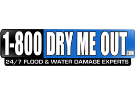 1-800-DRY-ME-OUT logo