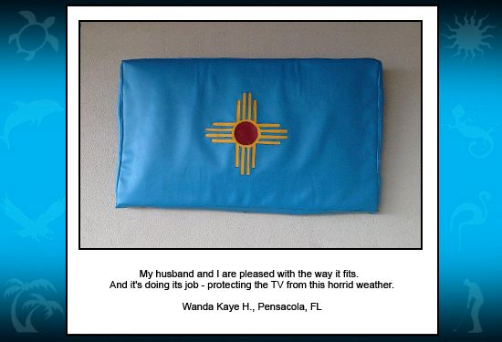 New Mexico Custom Cool TV Cover