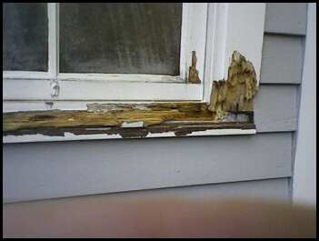 Rotted Window