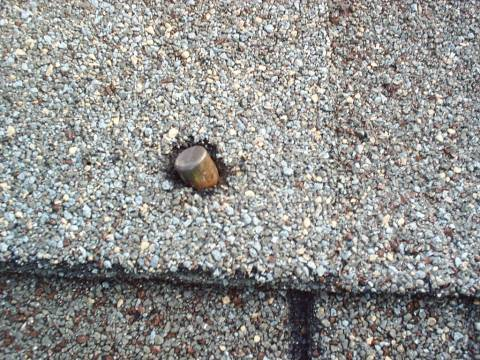 Lodged in roof shingle, how do we describe this one?