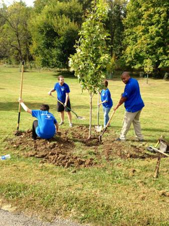 Planting trees at Sharon Woods!