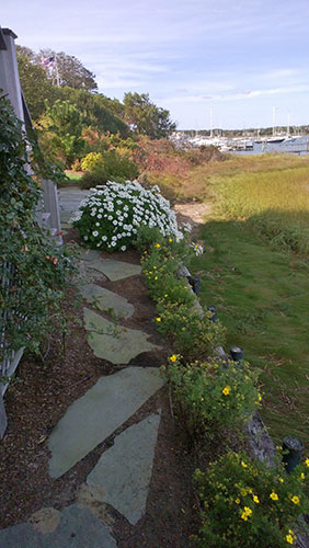 walkway-and-flowers