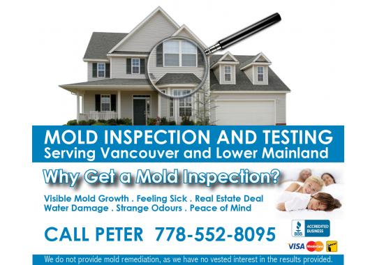 Mold Banner