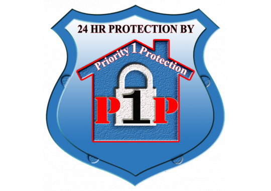 Priority 1 Protection, LLC logo