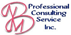 BNM Professional Consulting Services, Inc. logo